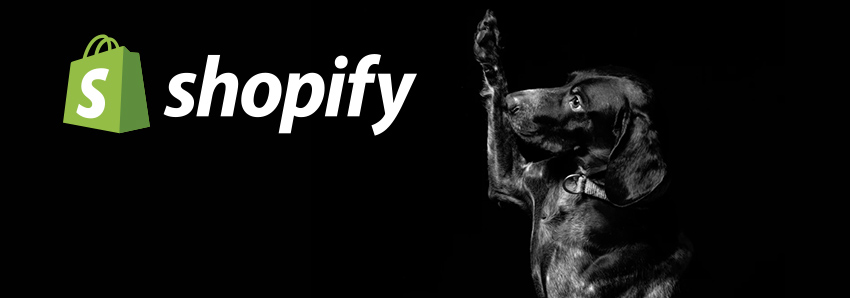 Our Shopify contest app is ready and free to install.